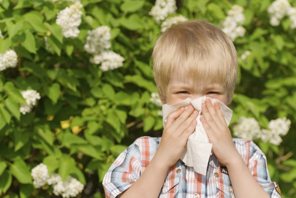 kid with allergies sneezing