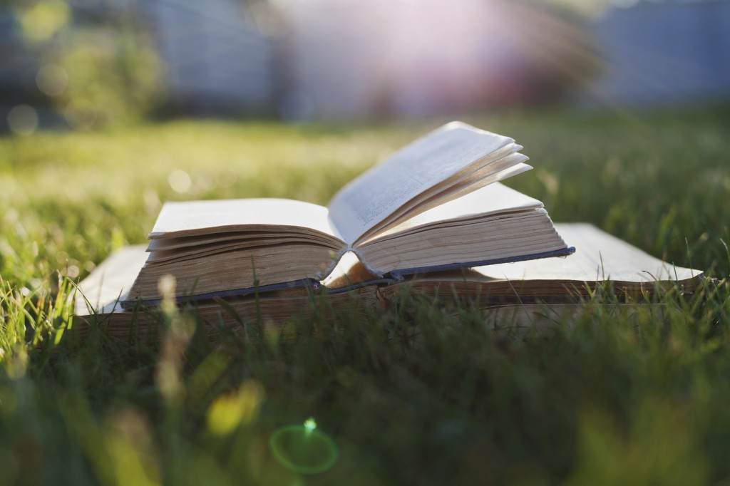 Open book on a green grass against beautiful sunset lights with sun ray, selective focus and shallow dof