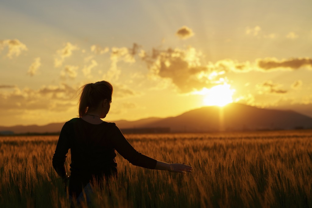 rear view of woman in wheat field feeling free and touching the nature, silhouette at sunset.