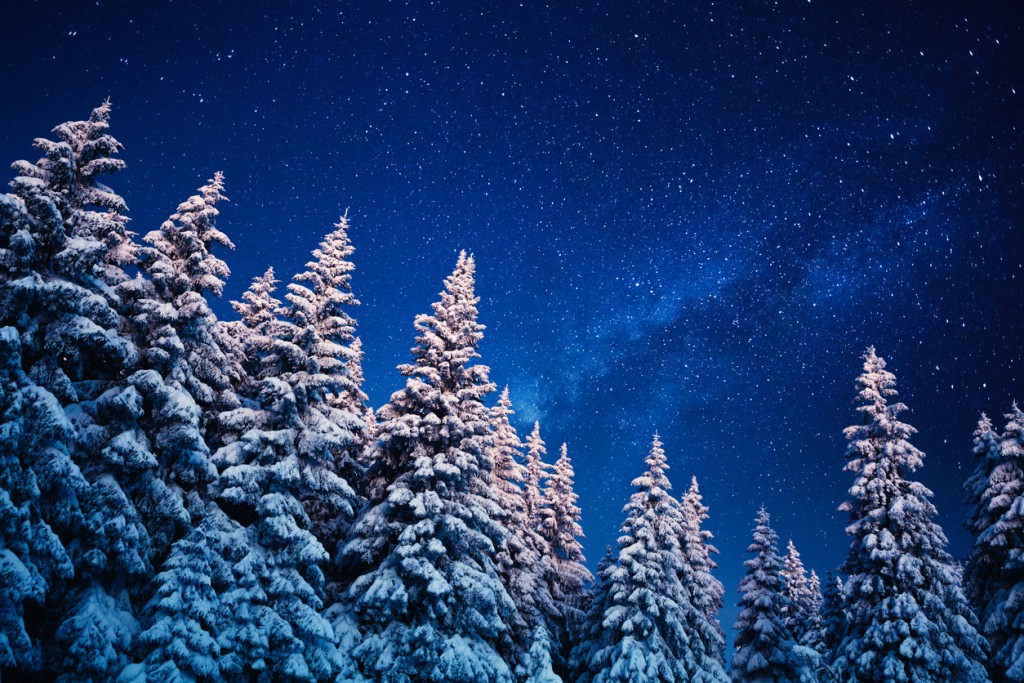 Winter Under The Stars