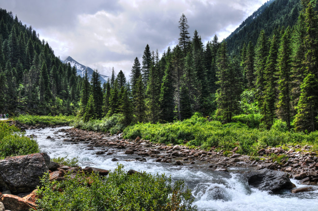 Scenic view of Austrian mountain, green pines and a river