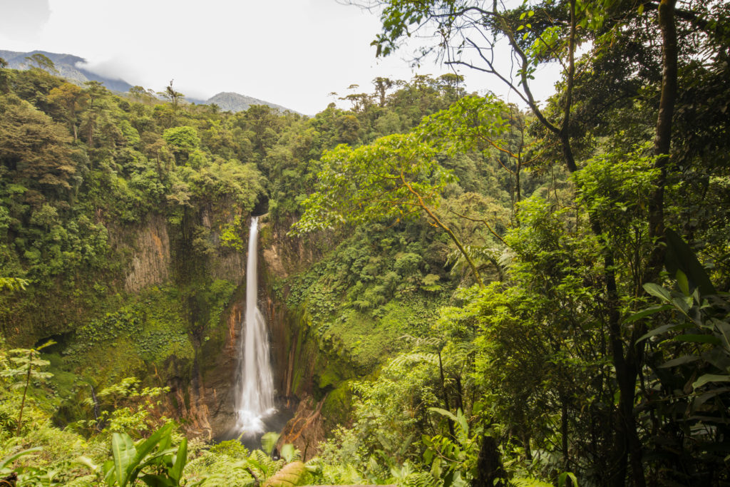 Scenic view of La Fortuna Waterfall and rainforest